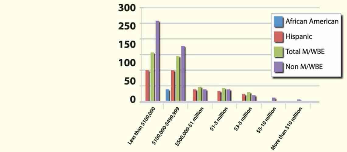 Audit criticizes disparity study