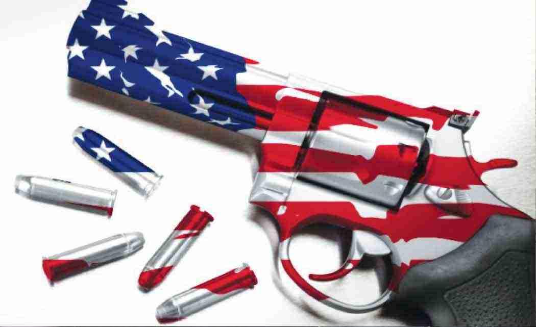 Major--survey--shows--US-gun--ownership--declining--
