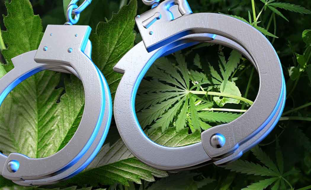 Pot-growers-convicted-on-fed-count-in-state-where-it's-legal-