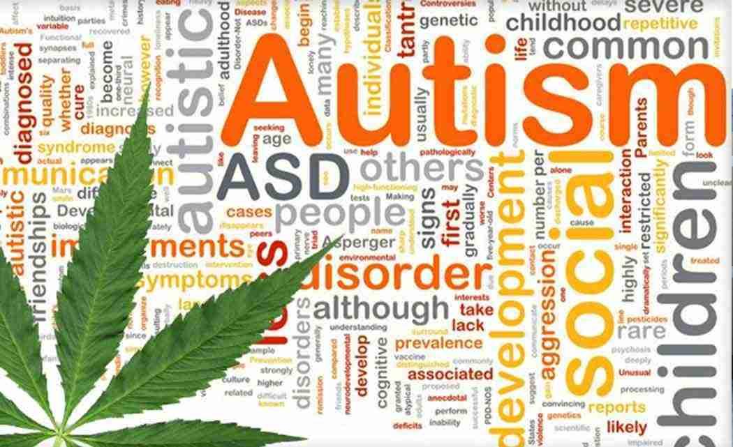 autism-marijuana