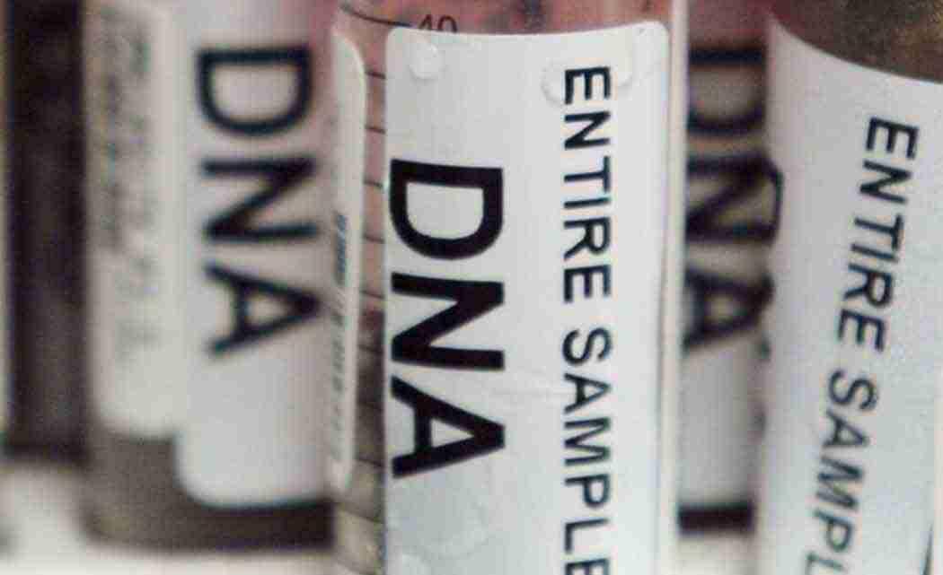 dna-bank