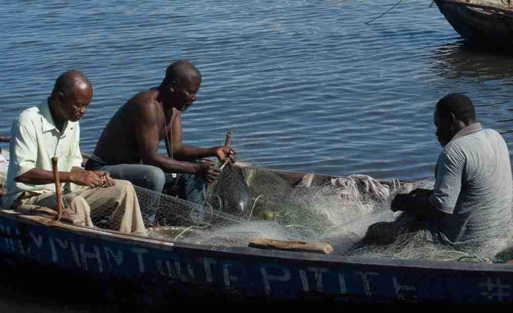 In-northern-Haiti,-conservation-efforts-focus-on-xxxxxx