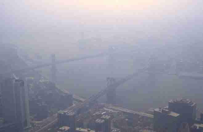 SmogNY