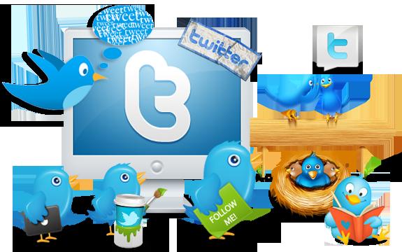 Twitter-Followers-6