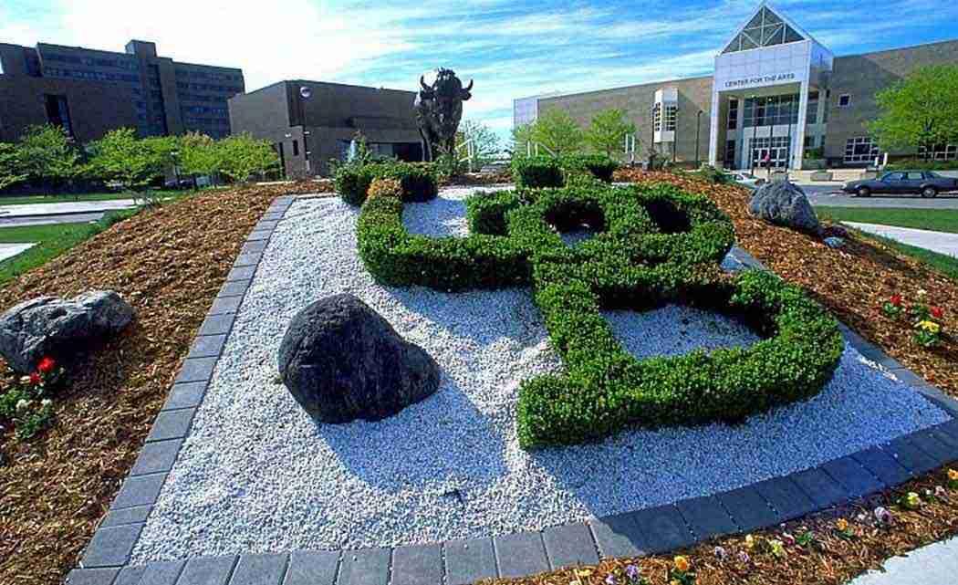 University-at-Buffalo-