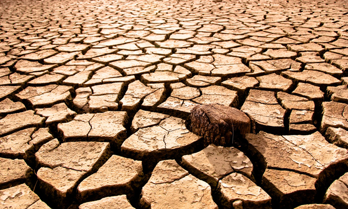 drought-dried-rieverbed
