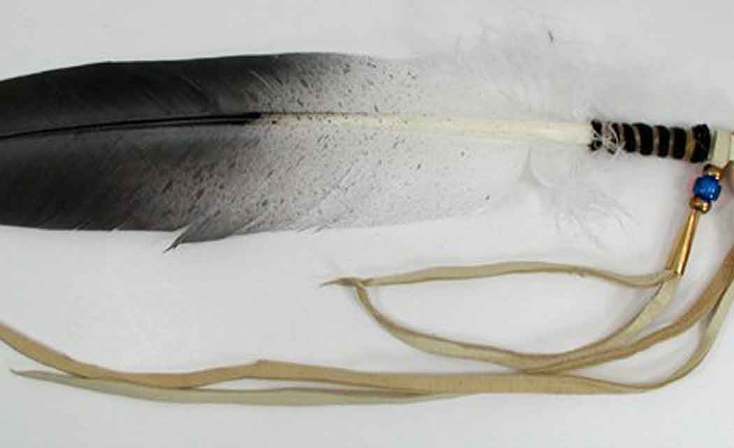 eagle-feather.jpg