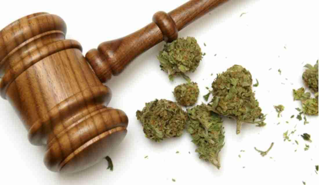 marijuana decriminalization