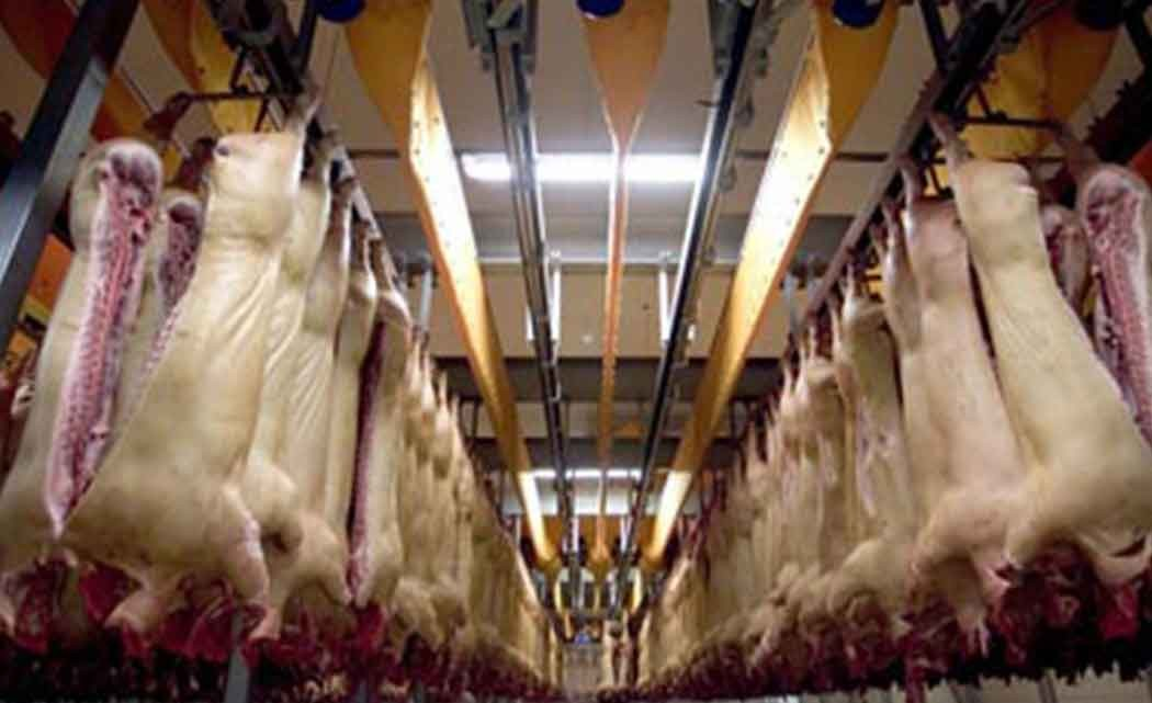 pork-processing-plant-