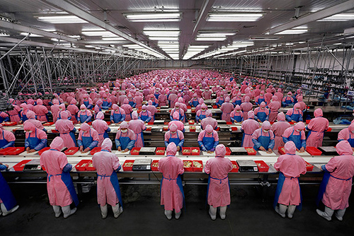 workers-in-chinese-factory2
