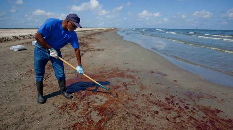 $140M-in-conservation-work-proposed-for-Gulf-of-Mexico
