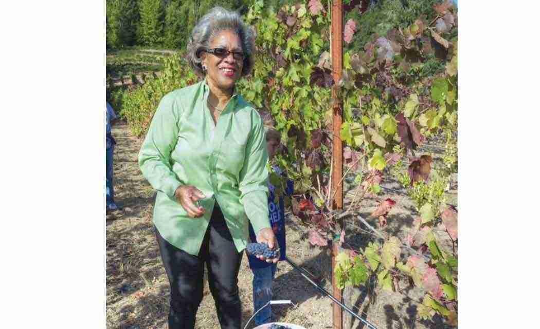 Minority-winemakers-look-to-change-industry'stereotypes