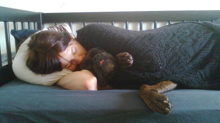 800px-human_sleeping_on_a_bed_with_a_dog