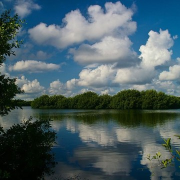 Everglades_National_Park_04