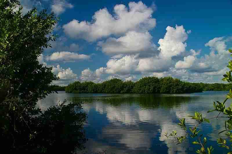 Everglades_National_Park_04