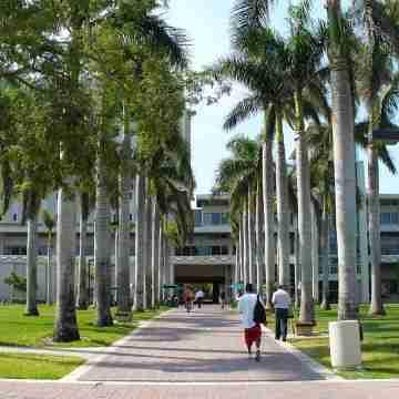 1200px-University_of_Miami_Otto_G._Richter_Library