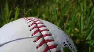 Baseball_showing_stitching_on_grass