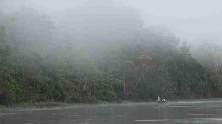 Tamshiyacu_Tahuayo_Regional_Conservation_Area_Iquitos_Amazon_Rainforest_Peru