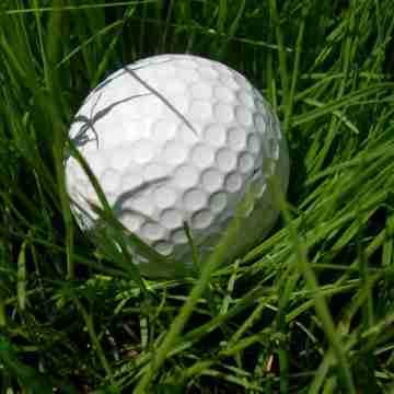 Golf_ball_grass