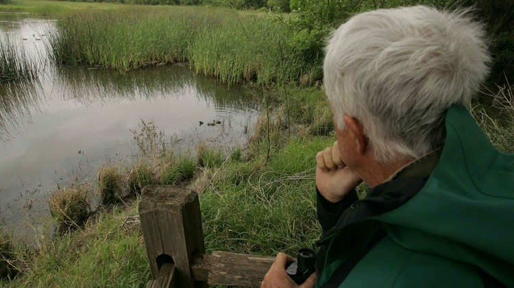 Older_man_sitting_sitting_on_the_shore_of_lake