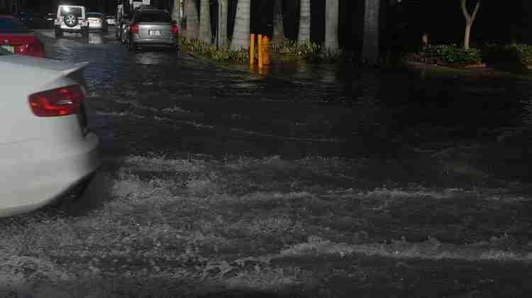 Miami_proper_tidal_flooding_12