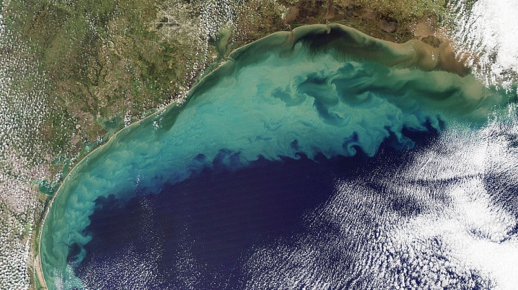 1200px-Sediment_in_the_Gulf_of_Mexico_(2)
