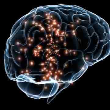 Neuronal_activity_DARPA