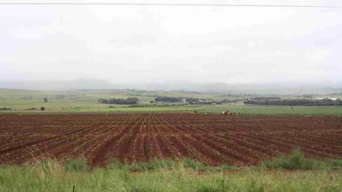 1200px-Farm_in_Mpumalanga