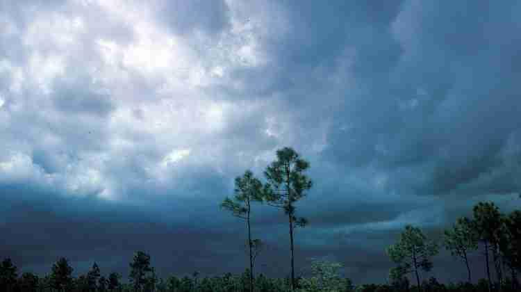 1200px-WEA_glades_storm_1282,_NPSPhoto,_Haugen,_Oct_64_(9257940384)