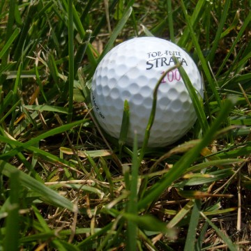 Golf_ball_in_the_grass