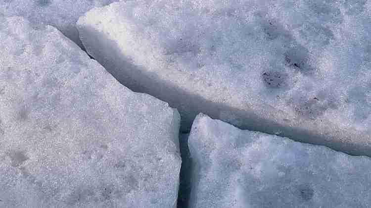 Ice_(1577621223)