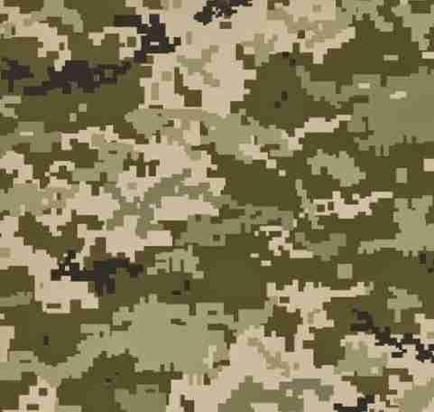 UA_Army_camo